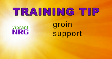 Groin Support